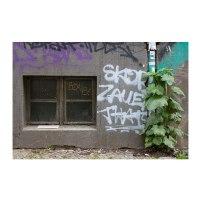 ventana-suelo